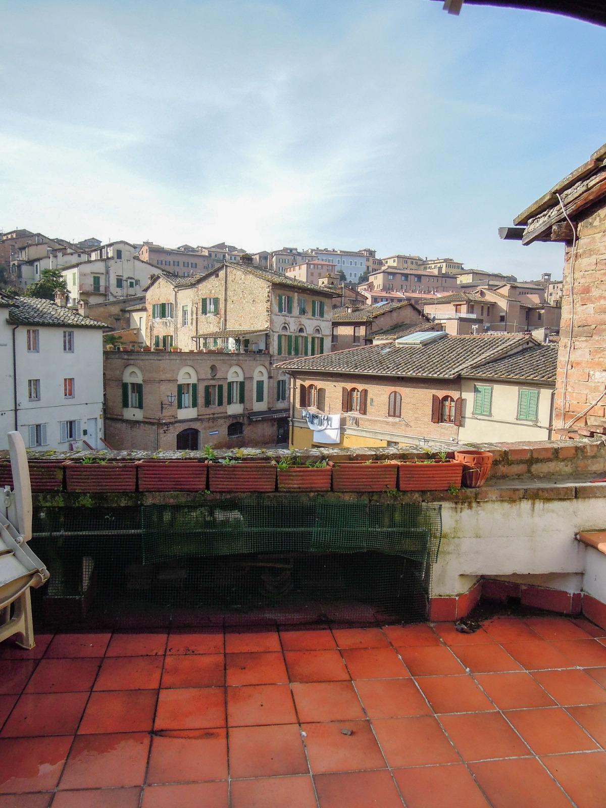 Siena  Centro storico (Contrada della lupa)