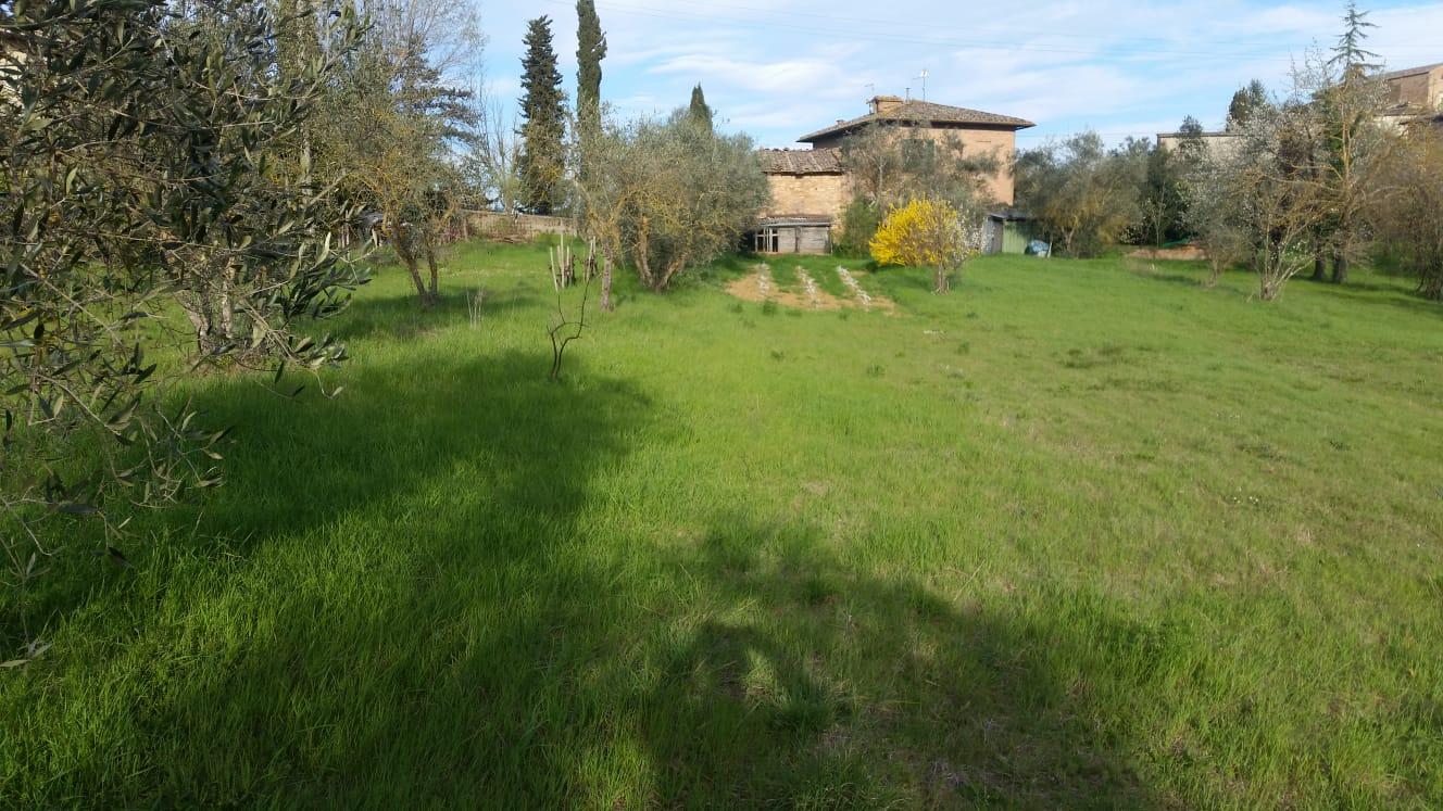 Costafabbri Villetta con 1 Ha di terreno.