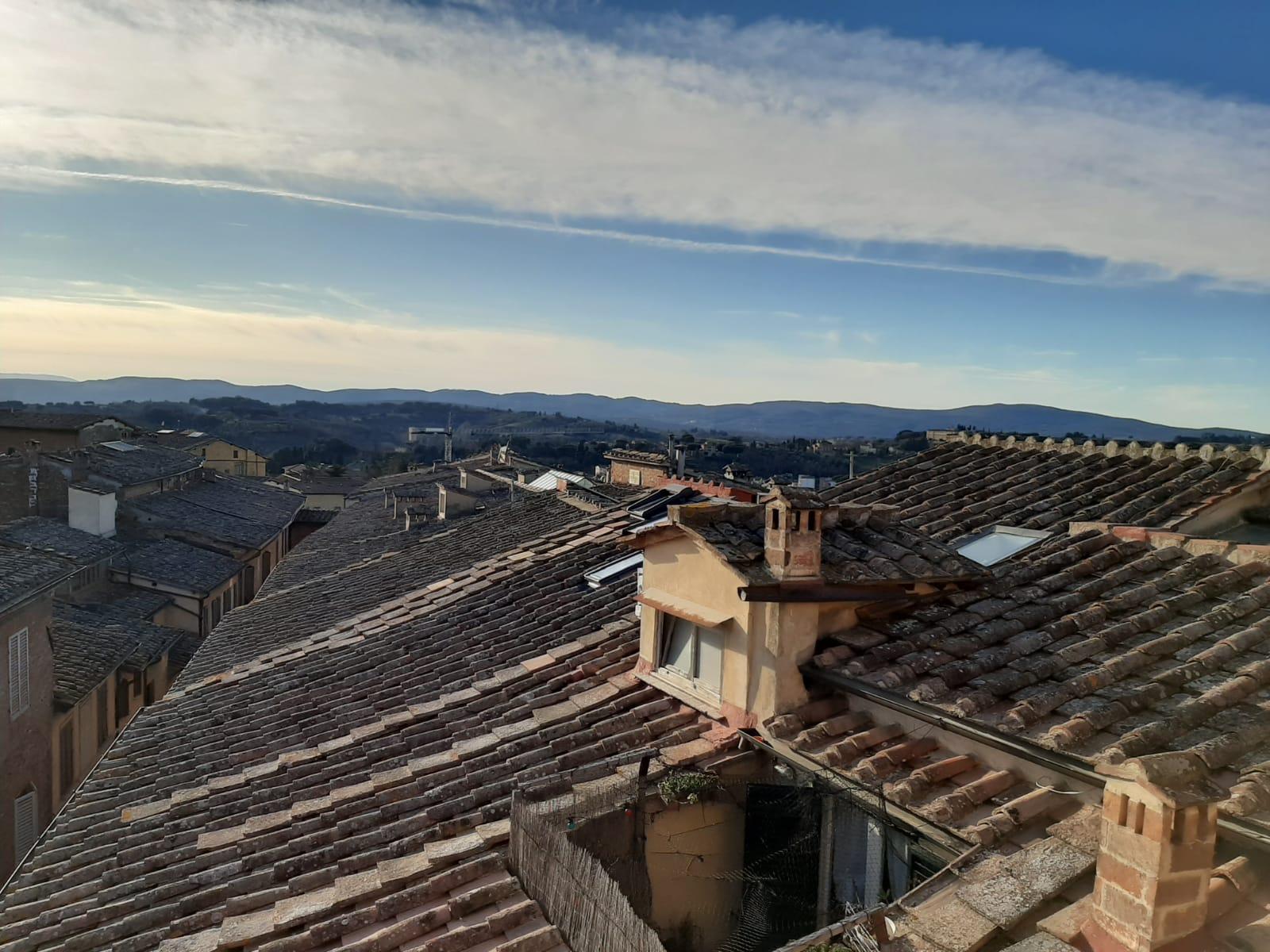 Siena – centro storico ( Pantera )